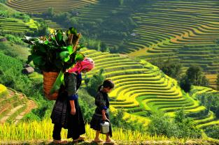 Sapa treking 2 Days  - 3 Nights ( sleep Home Stay )